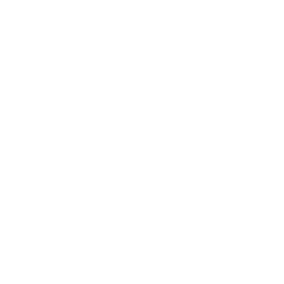 snowflake-and-rugby